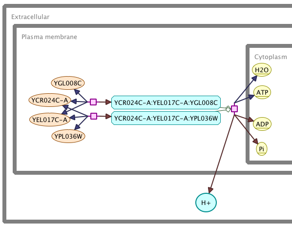Partial screenshot of an SBGN diagram rendered in Arcadia